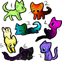 7 Kitten Adopts OPEN by CityOfAdopts