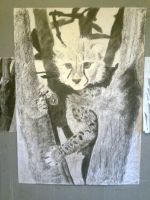 Charcoal: Cheetah Cub Stage 7 by Indiana8Jones
