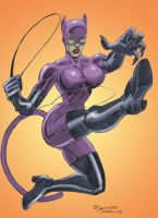 Catwoman colors by sapienstoonz