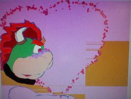heres the whole pic by BowsersMine