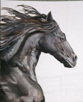 ::The Black Horse:: by white-angel-ariah