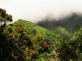 Koolau Mountains by joeyartist