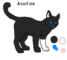 AshFur new ref by xX-Chase-Xx