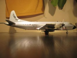 1/72 Scale P-3c Onion (Side) by Coffeebean2