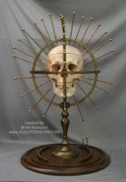 Craniometer - Human skull cranium device by Sculptured