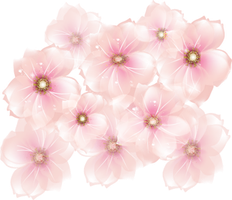 [RES] Pink Flowers PNG by HanaBell1