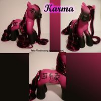 Kanji Pony Karma by AnimeAmy