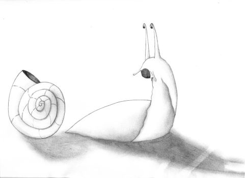 Naked Snail by imaginationhaven