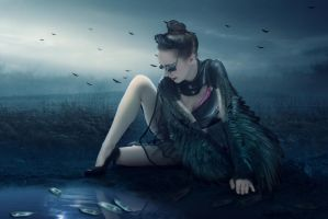 Black Swan by DerekEmmons