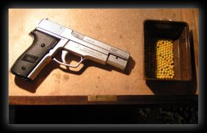 Sig Sauer P228 -two- by jackroberts