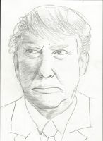 Serious Donald Trump by RobbieMelrose