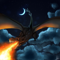 Dragon by 2852-8139-3580