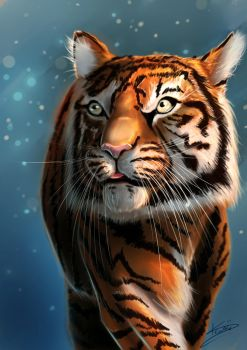 Tigre by Zeonyxx