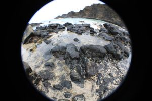 Tidepools by icarus-divinity