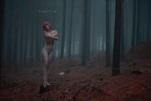 Misty by fionafoto
