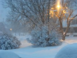 Feb 28th Winter Storm 3 by BlueIvyViolet