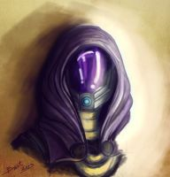 Tali'Zorah Vas Normandy by Shaya-Fury