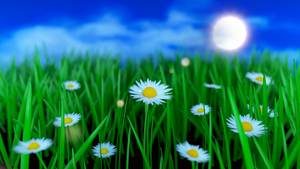 Daisies by Avenegerc47