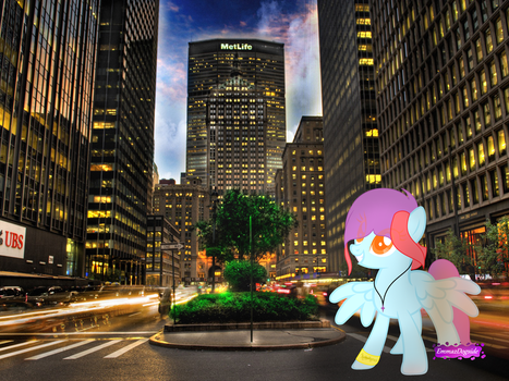 .: Cooky In The City :. by EmmazDogside
