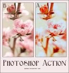 Photoshop Action by Ghado0