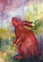 Red Bunny by liselotte-eriksson