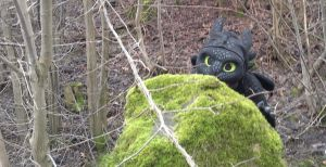 Toothless Cosplay - hide and seek by TheBandicoot