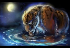 Tiger in the moonlight by Ti-R