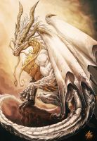 First Realm: Stone Dragon cover book 1 by Chaos-Draco