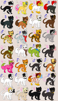 Kitty Collection by Dillusionist