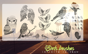 Bird brushes. by MaartuDesgins