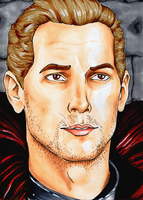 Commander Cullen by SignCherie