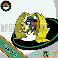 023. Pokito by bromos-pokemon