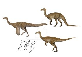 Ornithomimosaurs over the centuries by Pachyornis