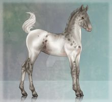 sVa Little Lottie 1294-foal ref by sVa-BinaryStar