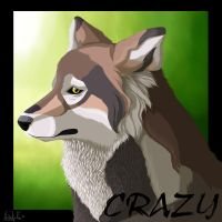 CRAZY by Nikithewerewolf