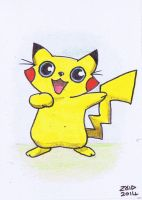 Pikachu funny cat by KingZoidLord