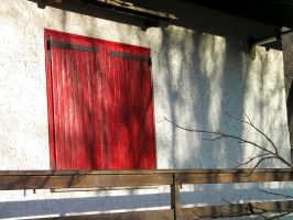 red window by paolaquasar