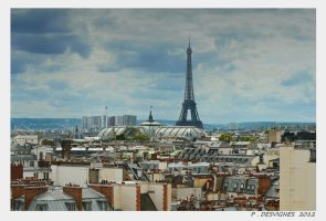roofs of Paris II by bracketting94