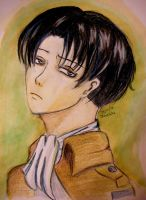 Captain Levi by luffywow