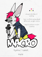 DT:  Macro by SUGARFRENZY