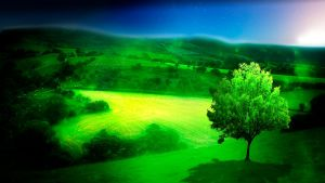 Green Fields of Glory by jesus-at-art