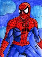 Sketchcard MvsC Spiderman by fedde
