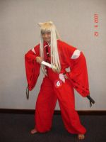 Inuyasha pictures from D san by seawaterwitch