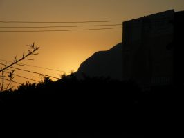 Power Lines at Dawn by kwuus
