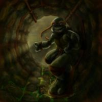 TMNT- Sewer Shredding by Icequeenkitty
