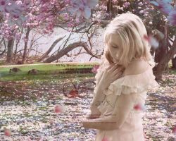 When Blossoms Fall by Sophia-Christina