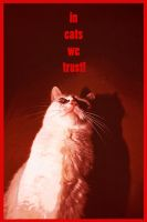 In cats we trust! by iisjah