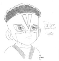 Toddler Falcon Shs by TeiMari