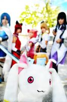 Dies, Kyubey... by Elementaria-Photo