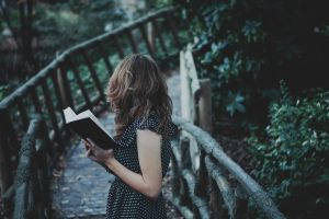 Last of the reader by Leona-Snow